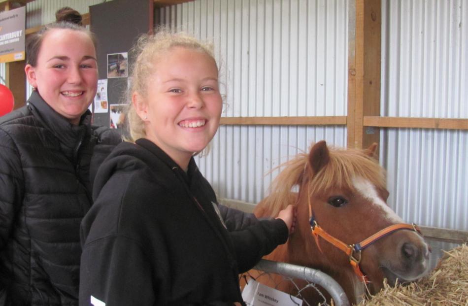 Emma Roberts (12) and Lucy Smith (11), both of Ashburton, enjoy patting Whiskey the Shetland Pony...