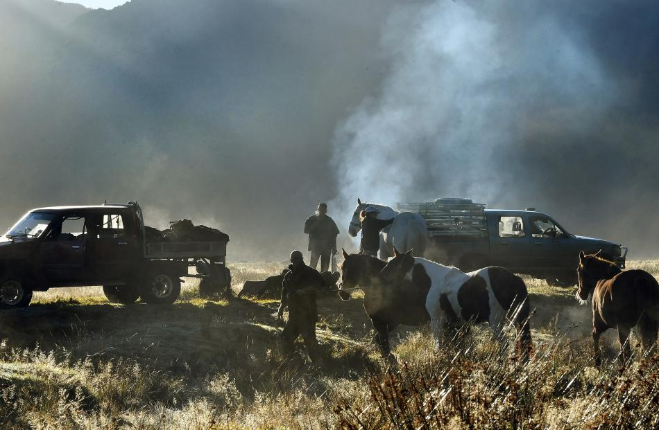 With a ute in need of tuning smoking in the background, horses wait to be saddled for the drive...
