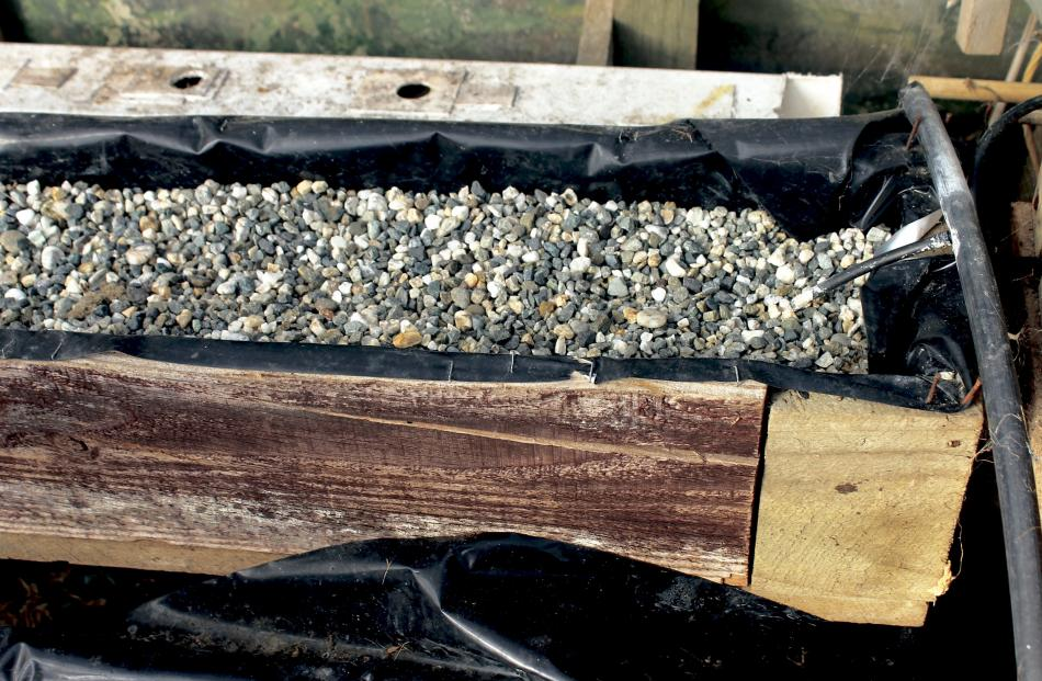 John's home-built troughs are lined with Panda Film and filled with gravel. Photo: Supplied