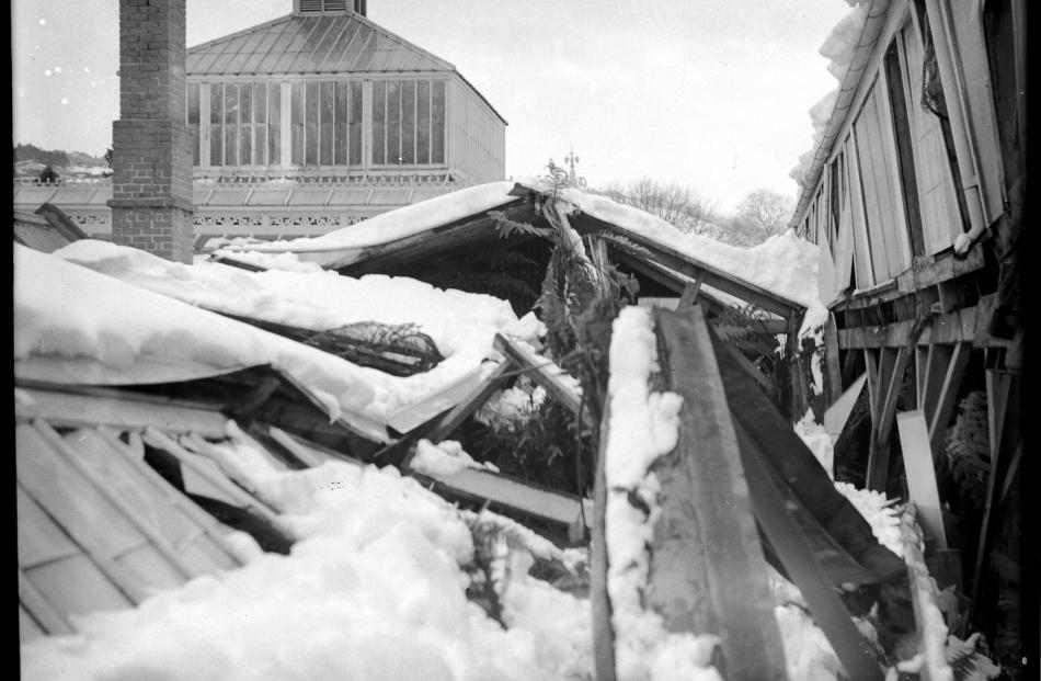 Heavy snow caused the roof of the fernery at the Dunedin Botanic Garden to collapse. PHOTO:...