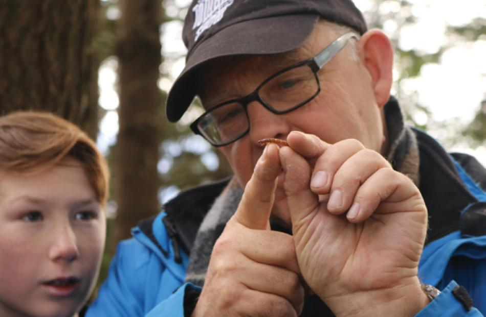 Year 8 pupil Hamish Mann and Ruud Kleinpaste looking at a predatory rove grub (larva of a rove...