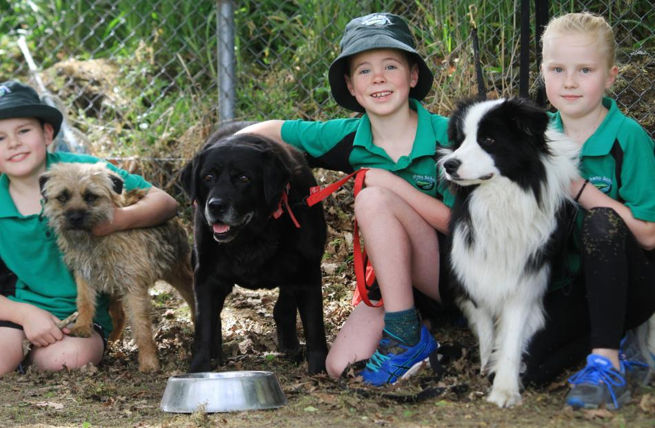 Sholto Backhouse (8), of Kia Ora, with Mr Pickles, Hunter Winmill (8), of Maheno, with Chloe, and...