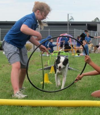 Abby Cochrane (10) puts Winnie through her paces in the dog obstacle course.
