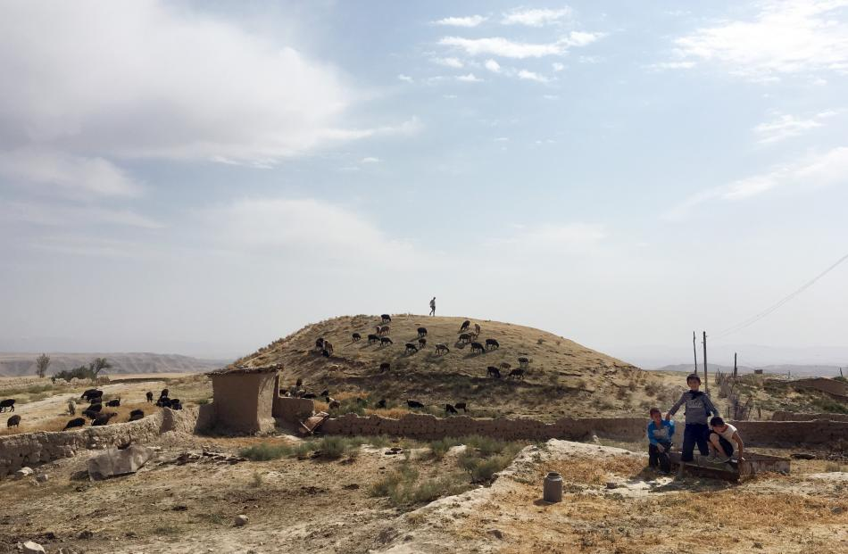 A photograph from the site of the excavation of a medieval cemetery in Uzbekistan.