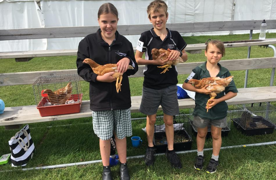 Springston School pupils with their pet brown shaver chooks Charlotte Watkins (13, left), with Zara, Toby Benison (12, centre), with Koru, and his brother Daniel (9), with Sleepy. Photos: David Hill