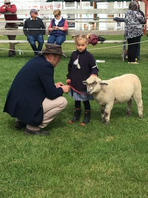 Judge Andrew Stokes, of Oxford, judges 6-year-old Sophie Westaway's lamb, Sparkles.