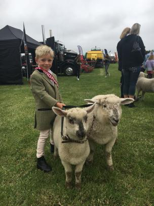 Archie Grant (5), of Kirwee, waits to enter the ring with his pet lambs Bruce and Shirley. He...