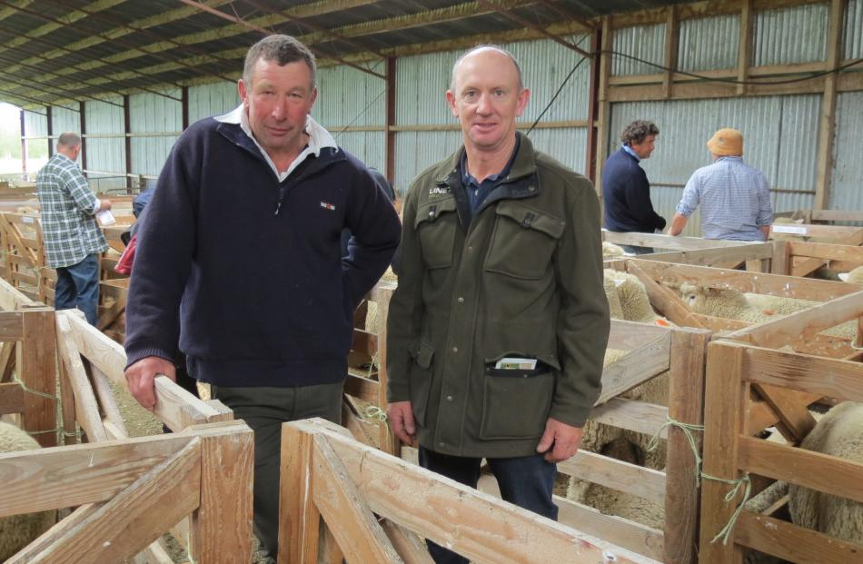 Visitors from North Otago (from left) Martin Parsons and Ross Nimmo look at Romney and Southdown...