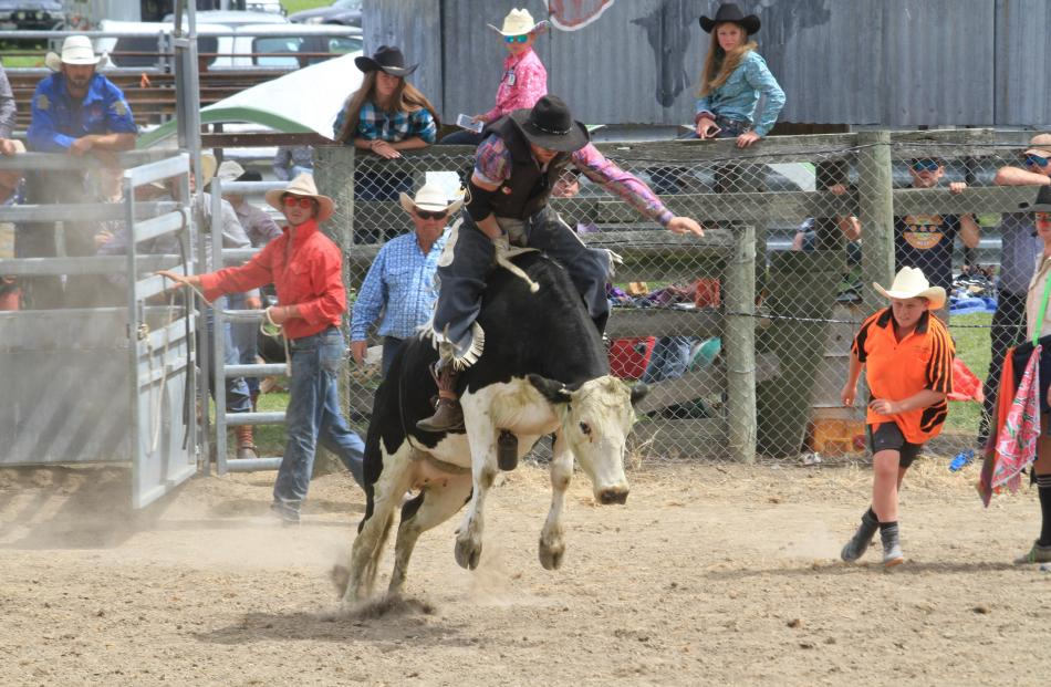Luke Longley, of Roxburgh, rides his way out of the second division steer ride.