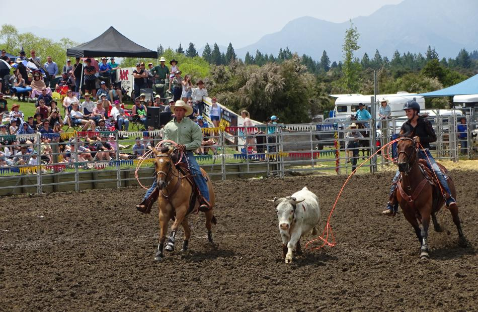 Husband and wife Shaun and Anna Thomas, of Balclutha, compete in the open team roping slack event.