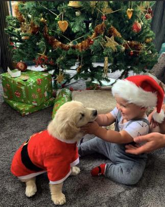 Mila Wiseman (8 weeks) and Flynn Johnstone (1) celebrate Christmas together in East Taieri. Photo...