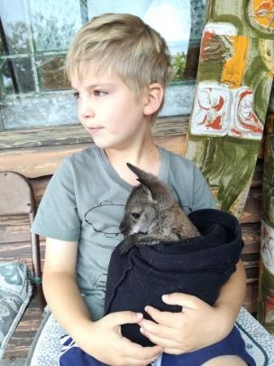 Will Bamford (7) meets a wallaby in Waimate on January 8. Photo: Debbie Henderson