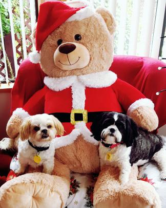 Charlie and Ellie Grant sit on the Santa bear of Great Nan (Nell Blay) on Christmas Eve in...