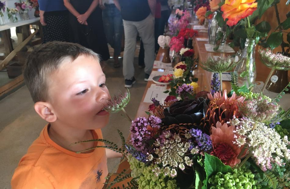 Charlie Vincent (3), of Christchurch, smells the cut flowers in the produce shed.