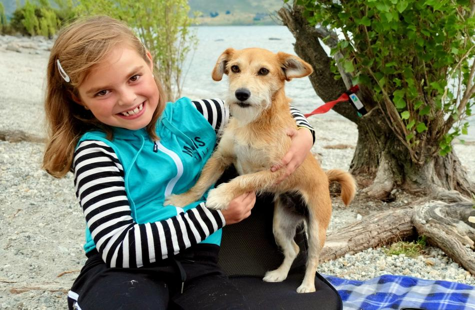 Mia Elsie Sutherland (7) plays with her dog Suki at Lake Wanaka. Photo: Robyn Sutherland