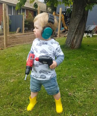 Bentley Aitkenhead (20 months) is all geared up to held with renovations over Christmas. Photo:...
