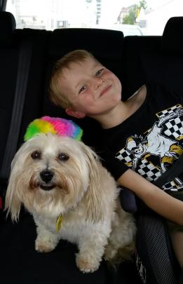 Ethan Gillanders (7) and Pepper have fun in the back of the car on the way to Evansdale Glen last...