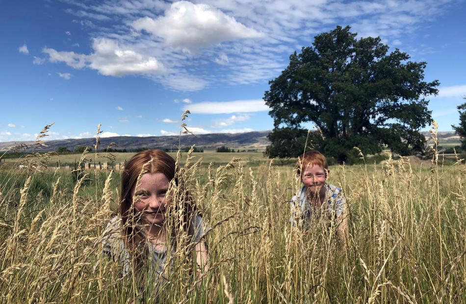 Adeline (10) and Patrick (7) Ball hide in long grass near Poolburn. Photo: Anne Gosnell