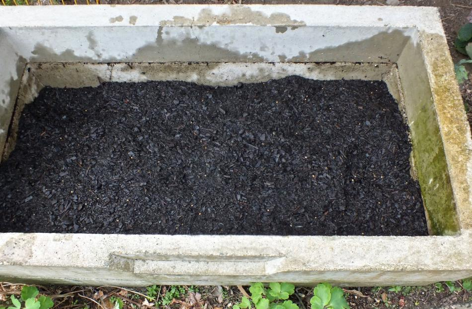 Step 2 . . . A deep layer of potting mix goes over the manure.