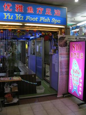 Footsore? Doctor fish may hold  the solution. Photo by Jeff Kavanagh.