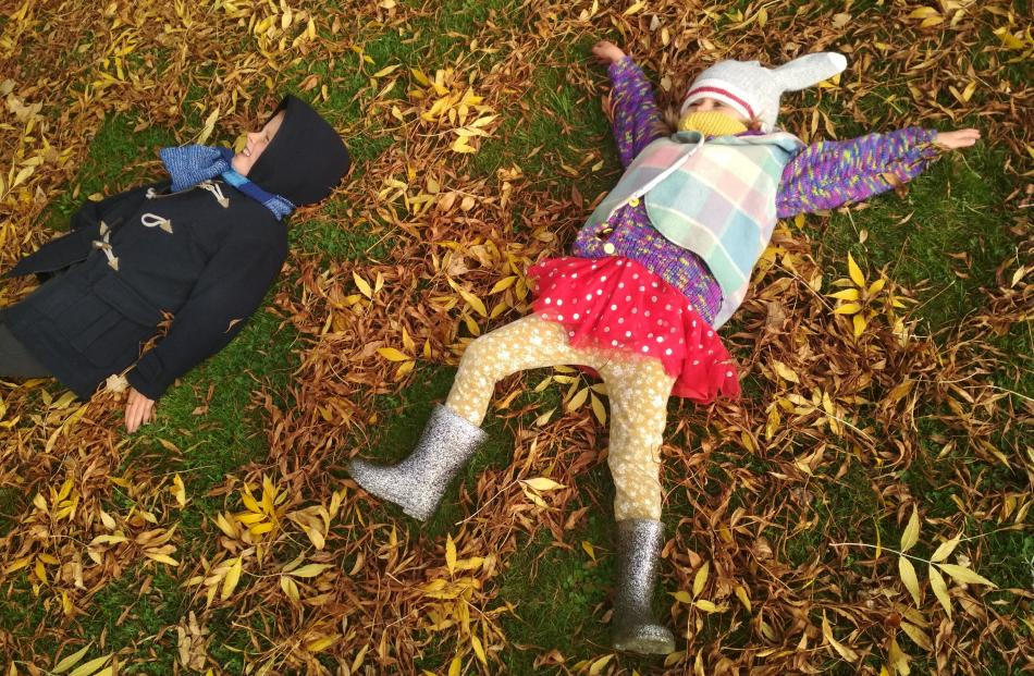 Angus (6) and Della (4) Dobson have fun in the leaves in North East Valley. PHOTO: SALLY DOBSON