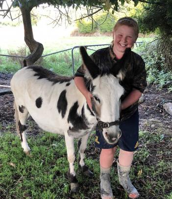 Louie Beattie (11), of Kelso in West Otago, gives the family pet donkey Knuckles (6) a hug. PHOTO...