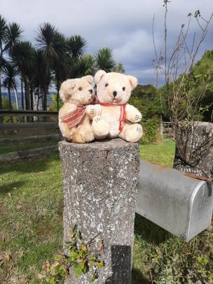 Country bears . . . Teddy display on a Warrington driveway. PHOTO: Kate Walker