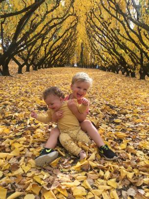 Scarlett (10 months) and Angus (3) Land revel in the beauty of a Cromwell autumn. PHOTO: STU LAND