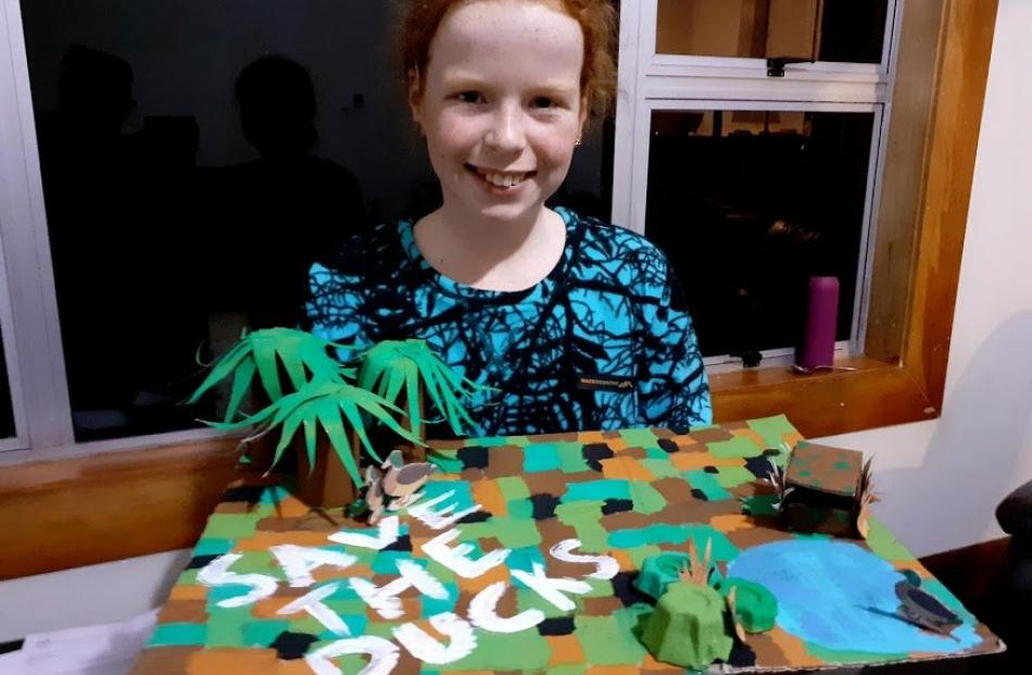 Tessa Orr, (11), from Dipton, Southland, doing home schooling in her bubble.  The topic was to...