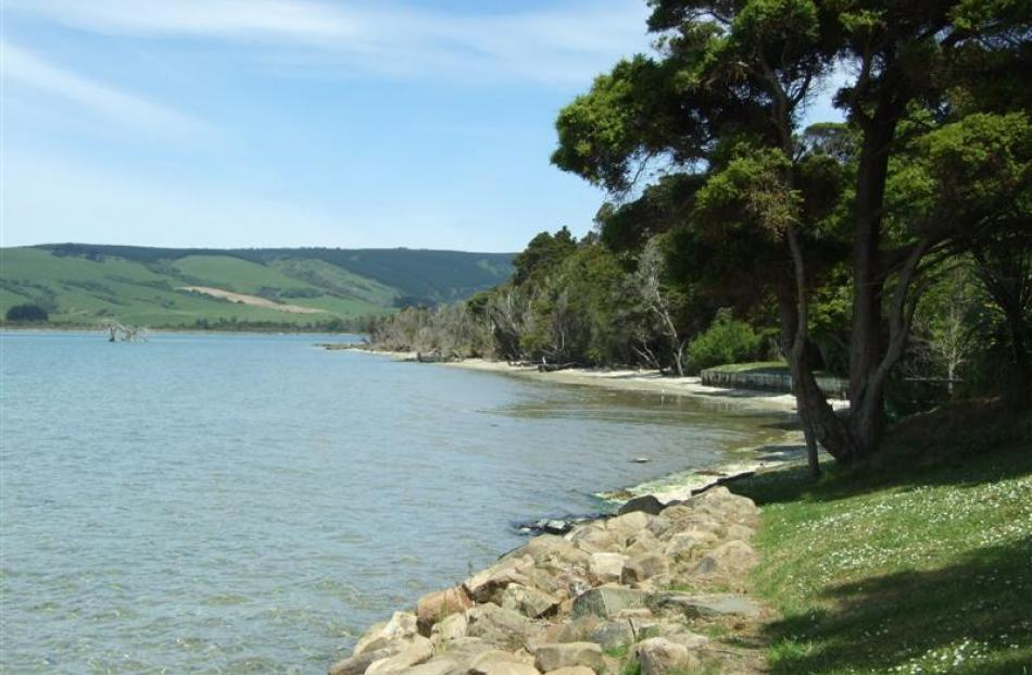 The estuary at Pounawea is a fantastic spot for kayaking or just enjoying the beauty of the Catlins.