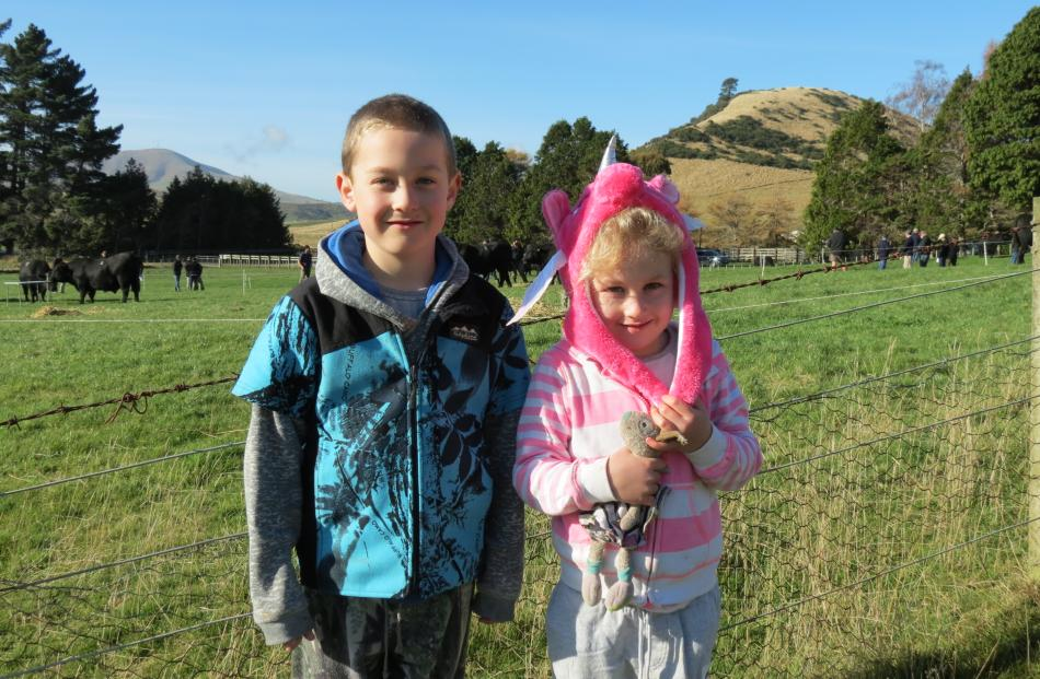 Next farming generation...Enjoying the Delmont Angus bull sale are (from left) Tayne (7) and...