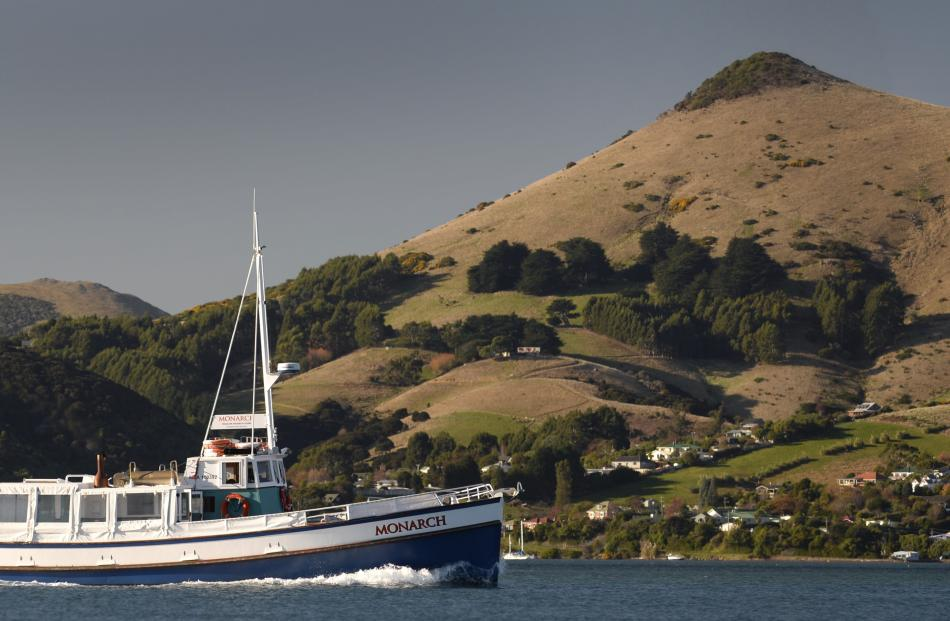 MV Monarch motors past Harbour Cone during a fully booked weekend of cruises on Otago Harbour.