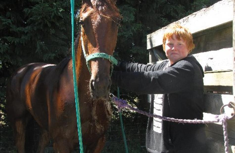 Stablehand Ethan Munroe (13), of Christchurch, washes down Might Have a Fight after race six.