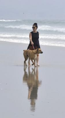 Sharon Tisdall, of Dunedin, walks along Long Beach with Podge the dog.