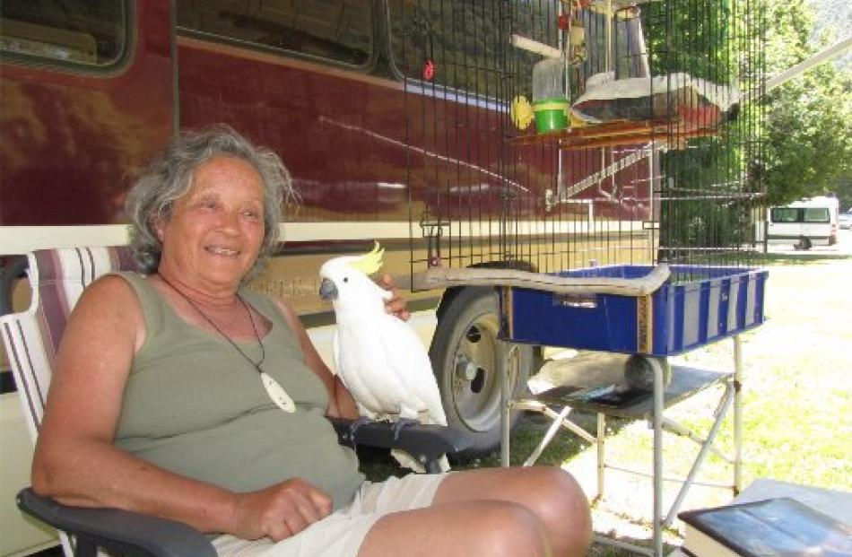 Brenda Idsinga and her pet cockatoo, Darling, take a few days out from travelling around New...