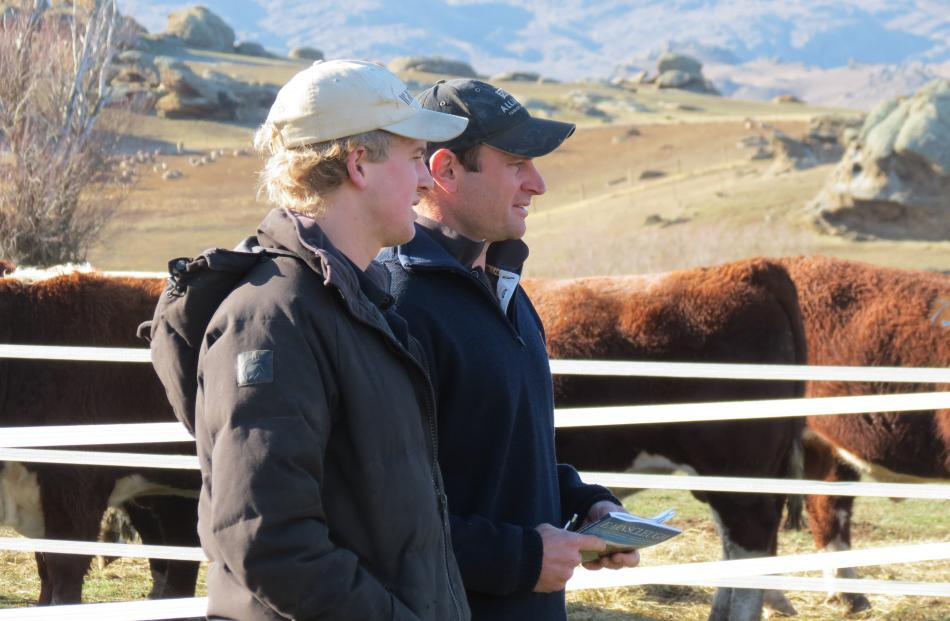 What's on offer ... Discussing the bull sale are, from left, Luke Hume, of Earnscleugh Station,...