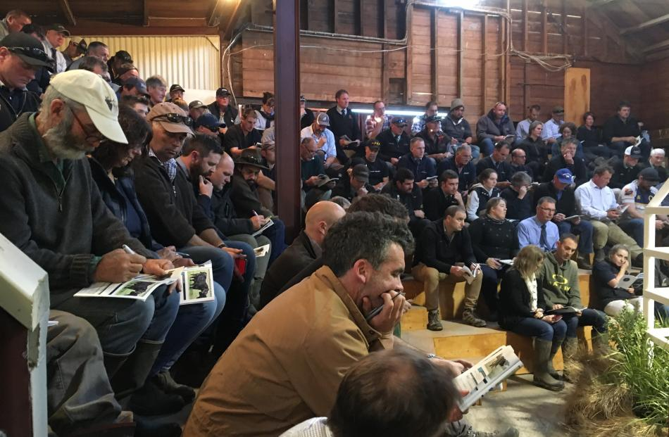 Farmers enjoyed a day out at the Sudeley Angus on-farm bull sale on day one of Alert Level 1....