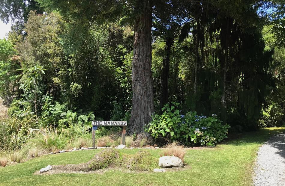 The entrance to Wendy and Robin Ross' garden is lined with native trees.