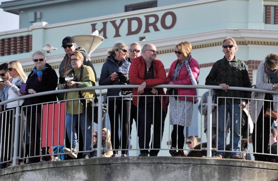 Spectators who chose not to take part watch as swimmers take the plunge.