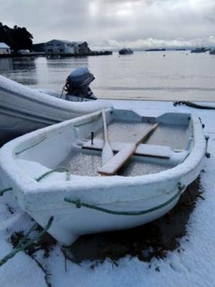 A snow covered boat at Oban in Stewart Island. Photo: Nik Hurring