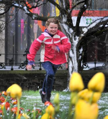 Amelia Landreth (8) enjoys the snow in the grounds of Dunedin's First Church. Photo: Christine O...