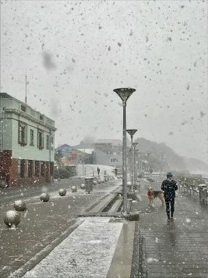 Snow fell to sea level at the St Clair Esplanade in Dunedin this morning. Photo: Luke Campbell