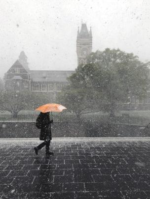 Snow falls at the University of Otago outside the clock tower building at 8.30 this morning. Photo: Claire Grant