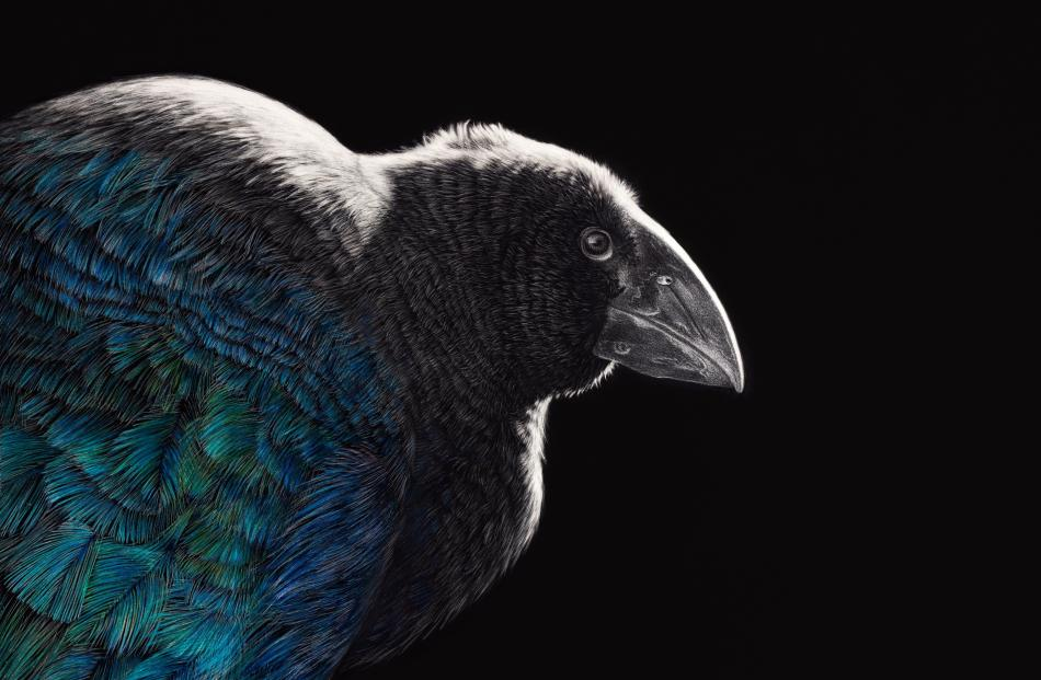 Back from the Brink received a Merit Award at the Tasman National Art Awards, Mapua 2019.