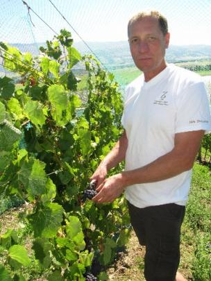Quartz Reef wine maker Rudi Bauer tastes some pinot noir grapes on his block at Bendigo.