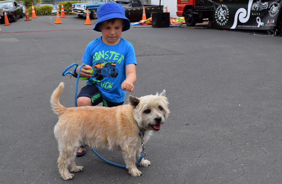 Dominic Hoover (6), of Mosgiel, pats dog Buddy.