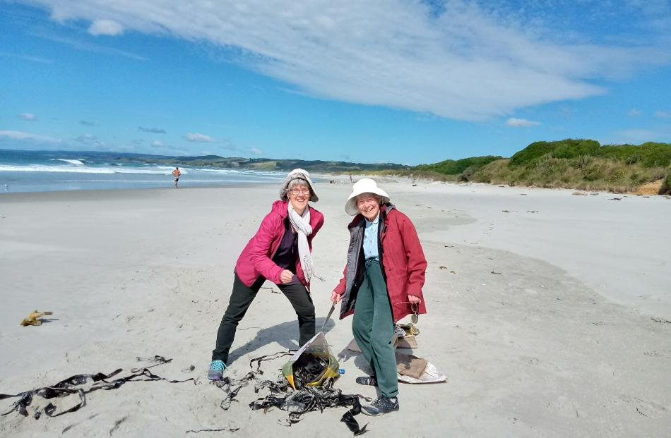 Philippa Jamieson (left) and Glennie Jamieson collect seaweed on Christmas morning at Brighton...