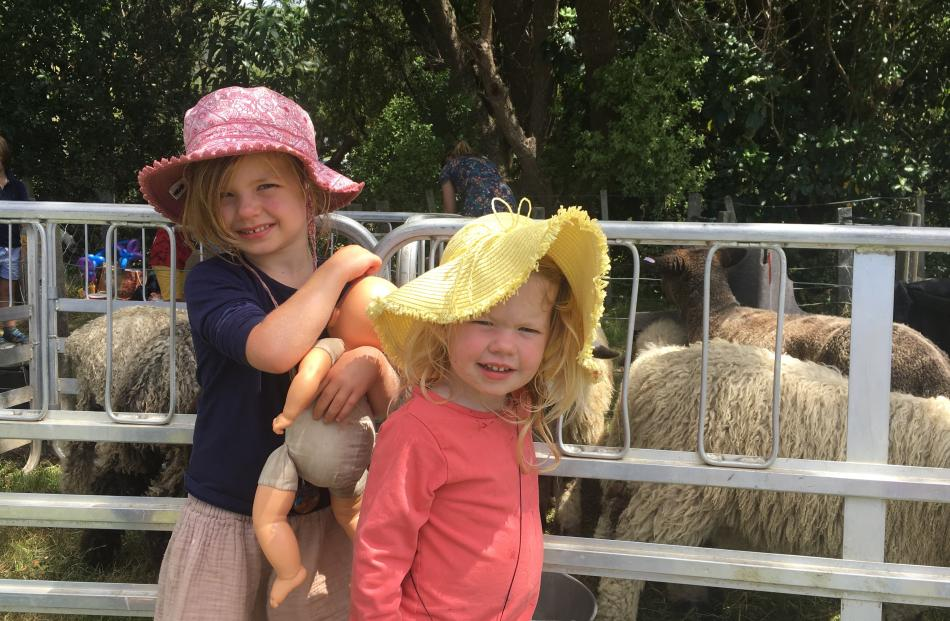 Sienna (4) and Cara (2) Bailey, of Christchurch, check out the rare breeds of sheep. PHOTOS:...