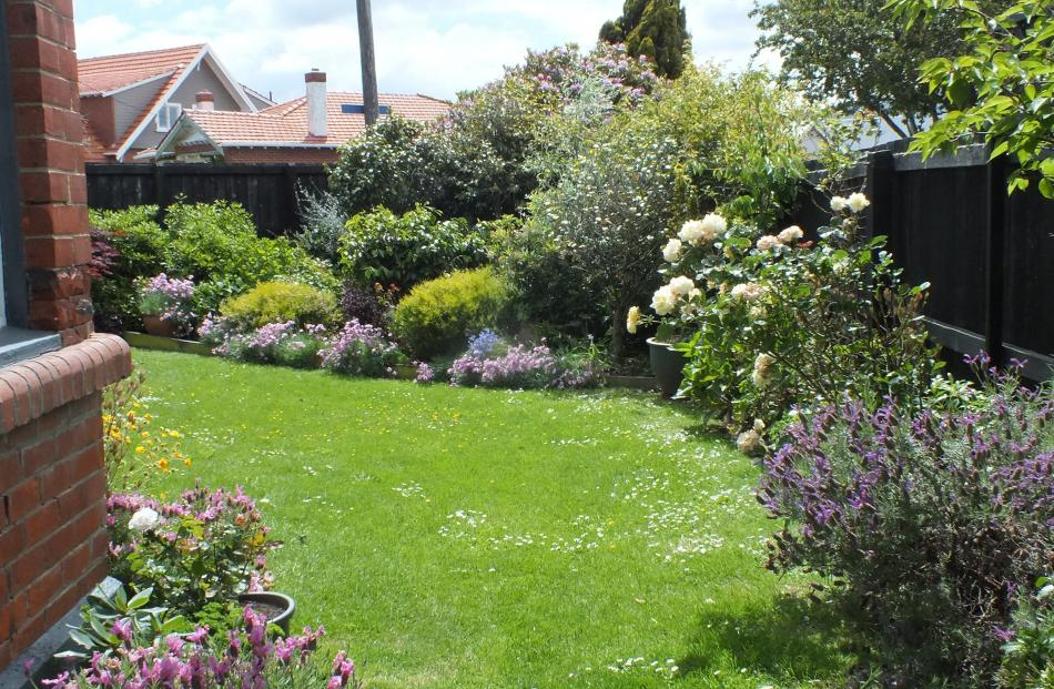 The Hoskin garden was created from scratch except for the yew (centre rear).