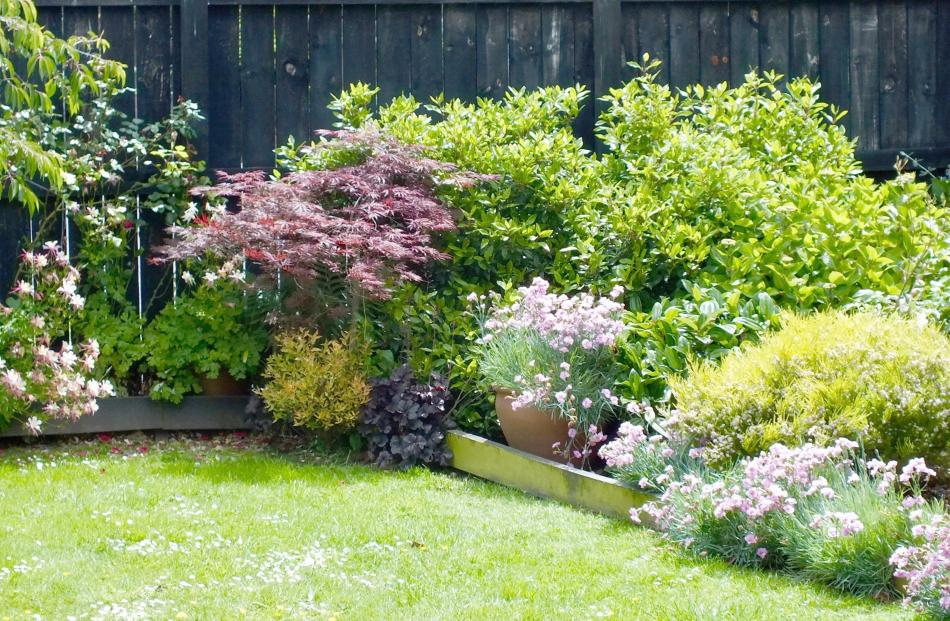 If doing the garden now, Thelma Hoskin would not have wooden edges to beds.